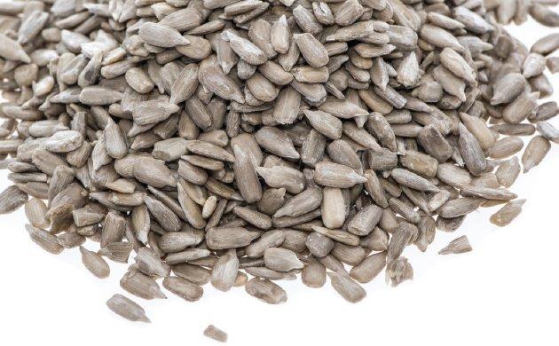 seeds4.jpe