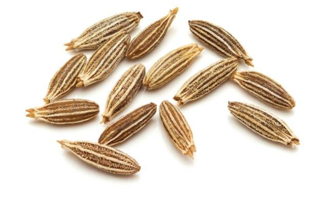seeds10.jpe