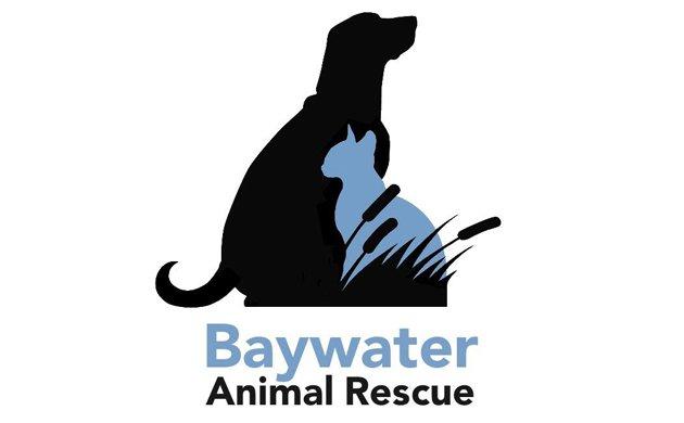 baywater-main.jpe