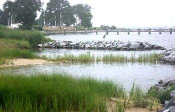 shoreline2.jpe