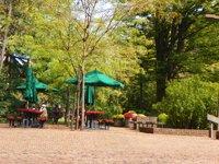 tawes-garden_lea-dolimier.jpe