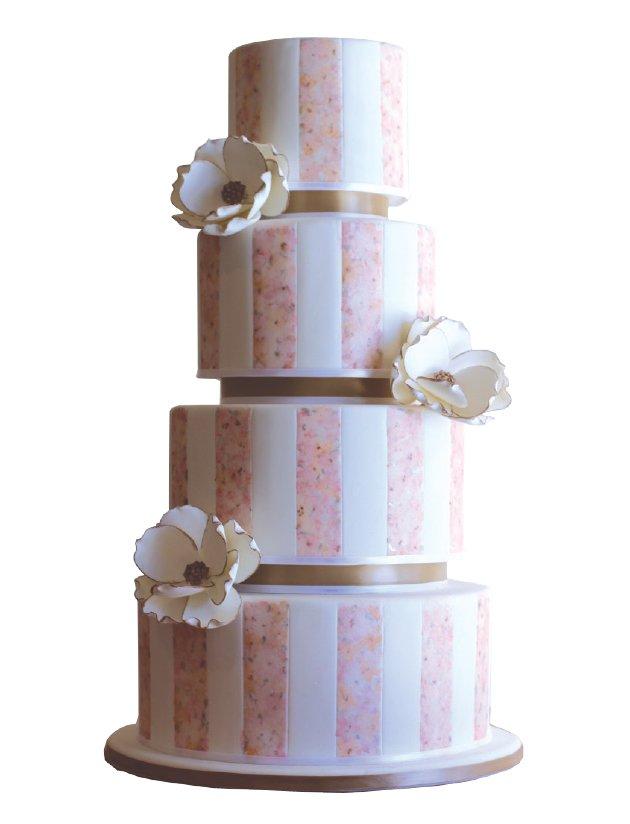 cake6.jpe
