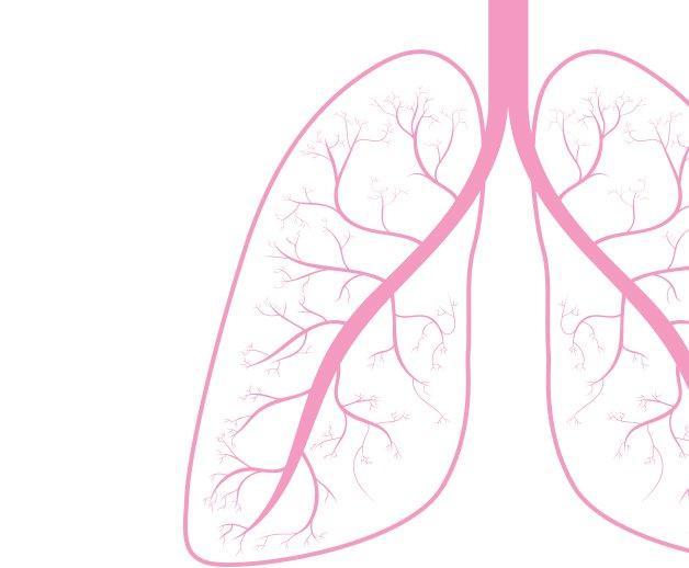 lung_20cancer.jpe