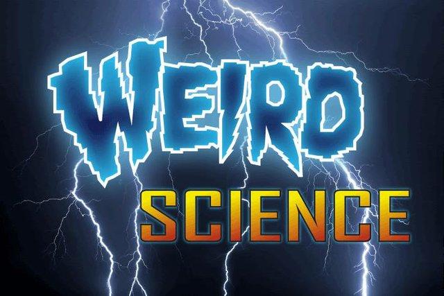 WeirdScience3.jpg