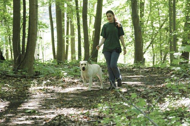 Guest Activites Nature Walk (02).jpg