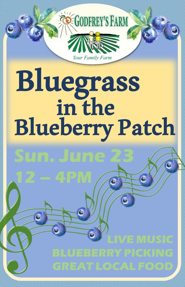 2019 Bluegrass in the Blueberry Patch poster.jpg