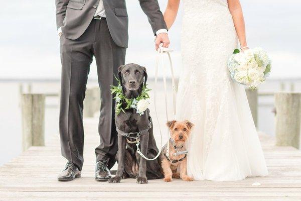 SCOTT+WEDDING+HIGHLIGHTS-372_herrington-on-the-bay-maryland-wedding-photographer-anna-grace-photography-photo.jpg
