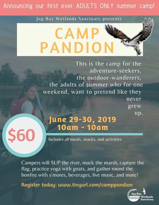Summer Camp 2020 now open!.jpg