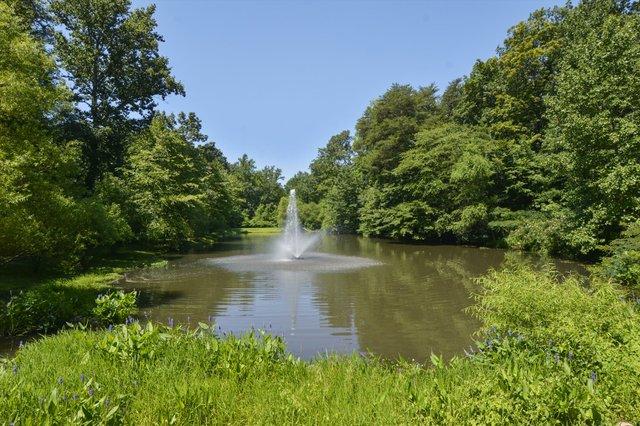 Amenity-Gingerville Pond-_DSC3951.JPG