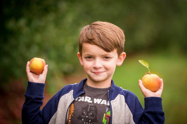 apple festival 1.png