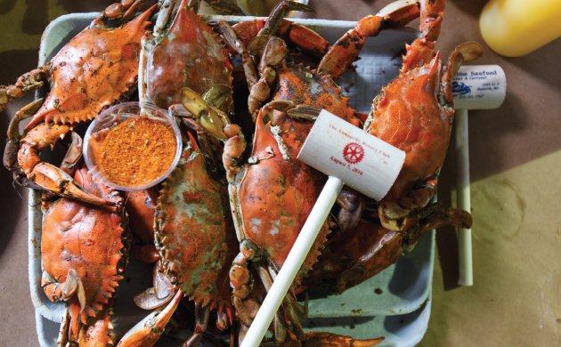 crabs1.jpe
