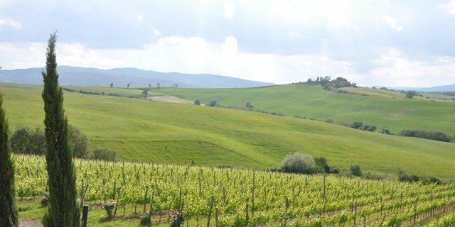 Tuscan Wine Dinner.jpg