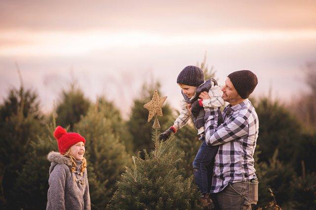 Christmas around the farm.jpg