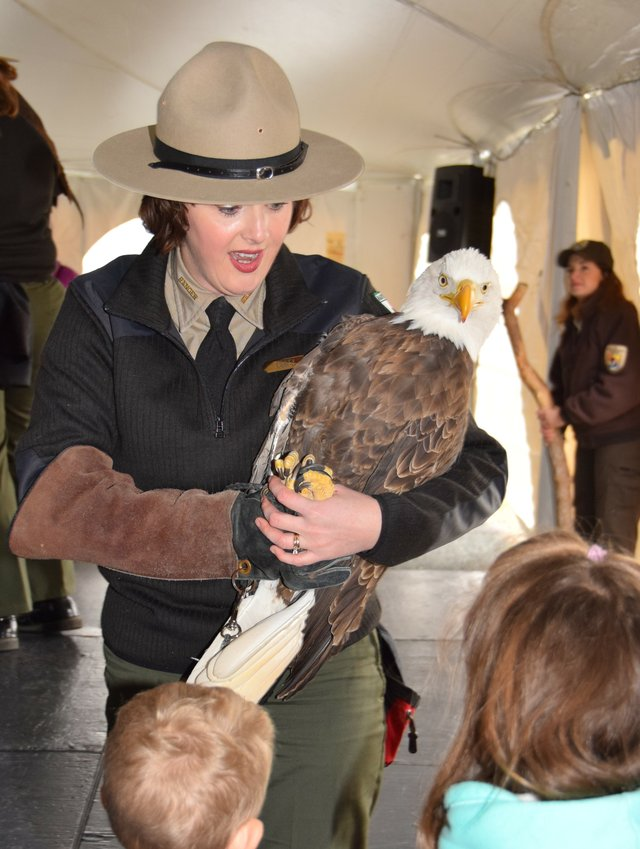 Eagle_Fest_2018 credit Rita Mhley.jpg