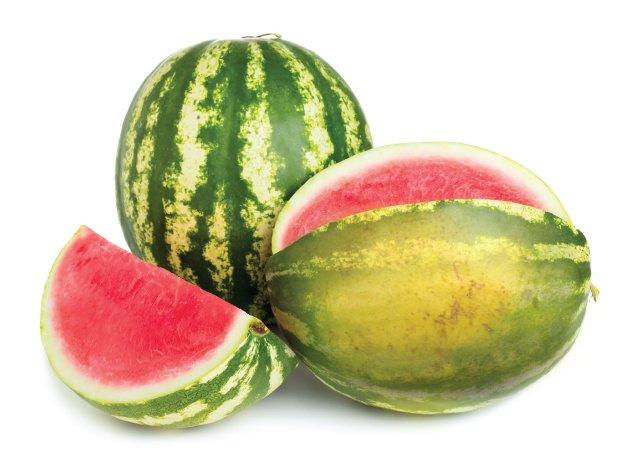 watermelon1.jpe