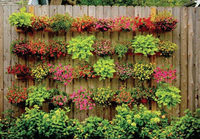 B0420_0000s_0000_plants.jpg