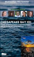 Bay 101 flyer 2020.png