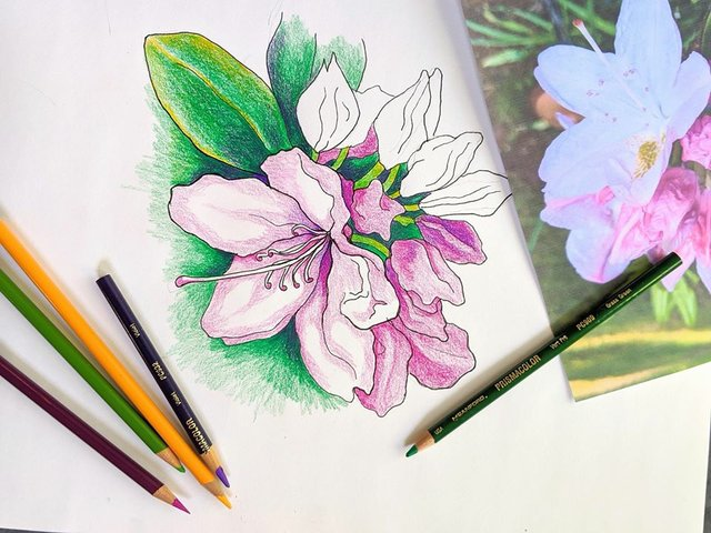 virtualbotanical.jpg