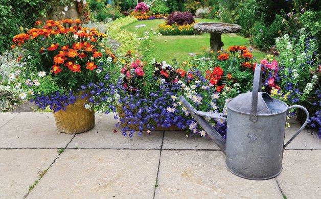 C0820_0000s_0008_gardening 1.jpg
