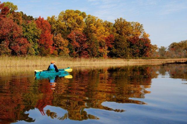 Fall Colors, Morgan Creek Sultana Paddle CREDIT CHRIS CERINO.jpg