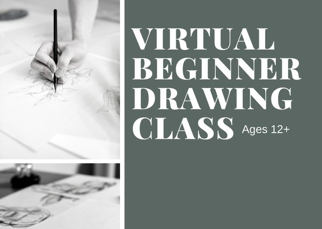 virtualbeginnerdrawingclass.png