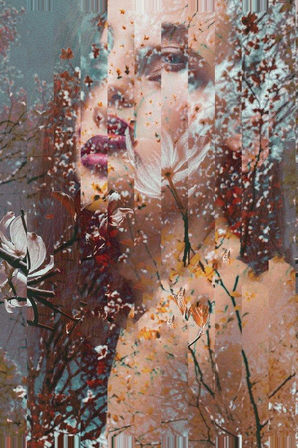 Reflections - Alisa Hoodikoff.jpg