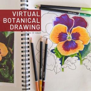virtualbotanicaldrawing.png