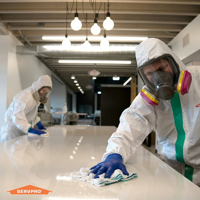 SERVPRO_CSC_PPE_Team_Wiping.jpg