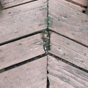 wood damaged boards.jpeg