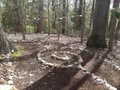 Sacred Walk Labyrinth.jpg