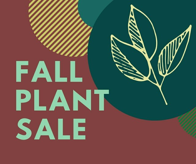 Fall Plant Sale (3).jpg