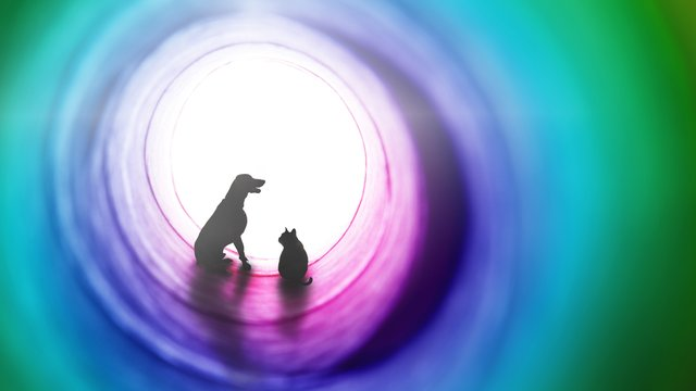 Pet Loss Facebook Event Cover