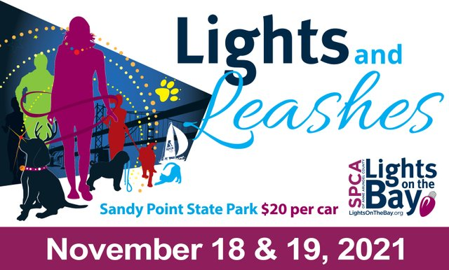 Lights and Leashes Banner.jpg
