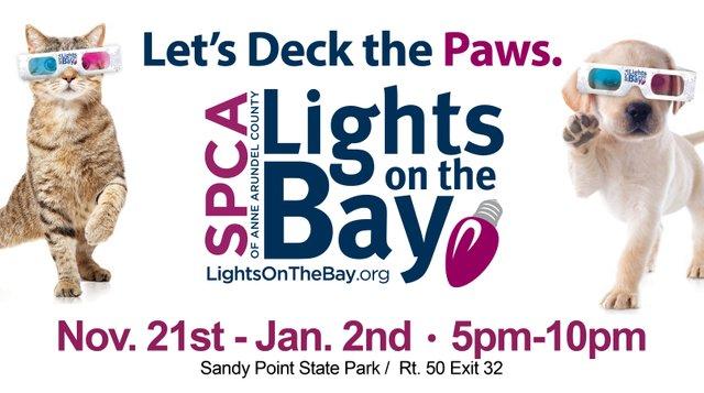 Lights on the Bay Banner2.jpg