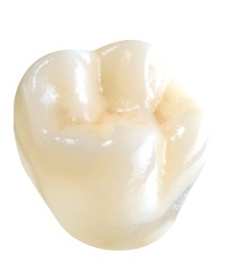 dental3.jpe